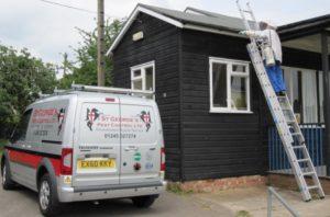 St Georges Pest Control Southend-pest-control-southend